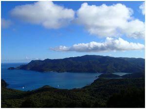 PENINSULE DE COROMANDEL - MERCURY ISLAND