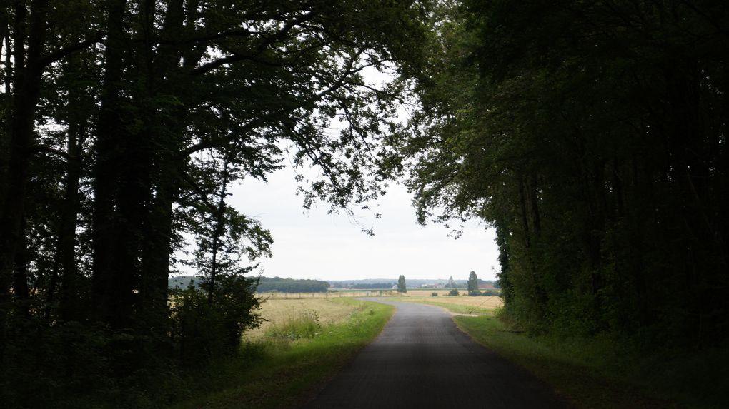 Balade Saint-Loup-des-Vignes - PR T17 des petits bois de Saint-Loup