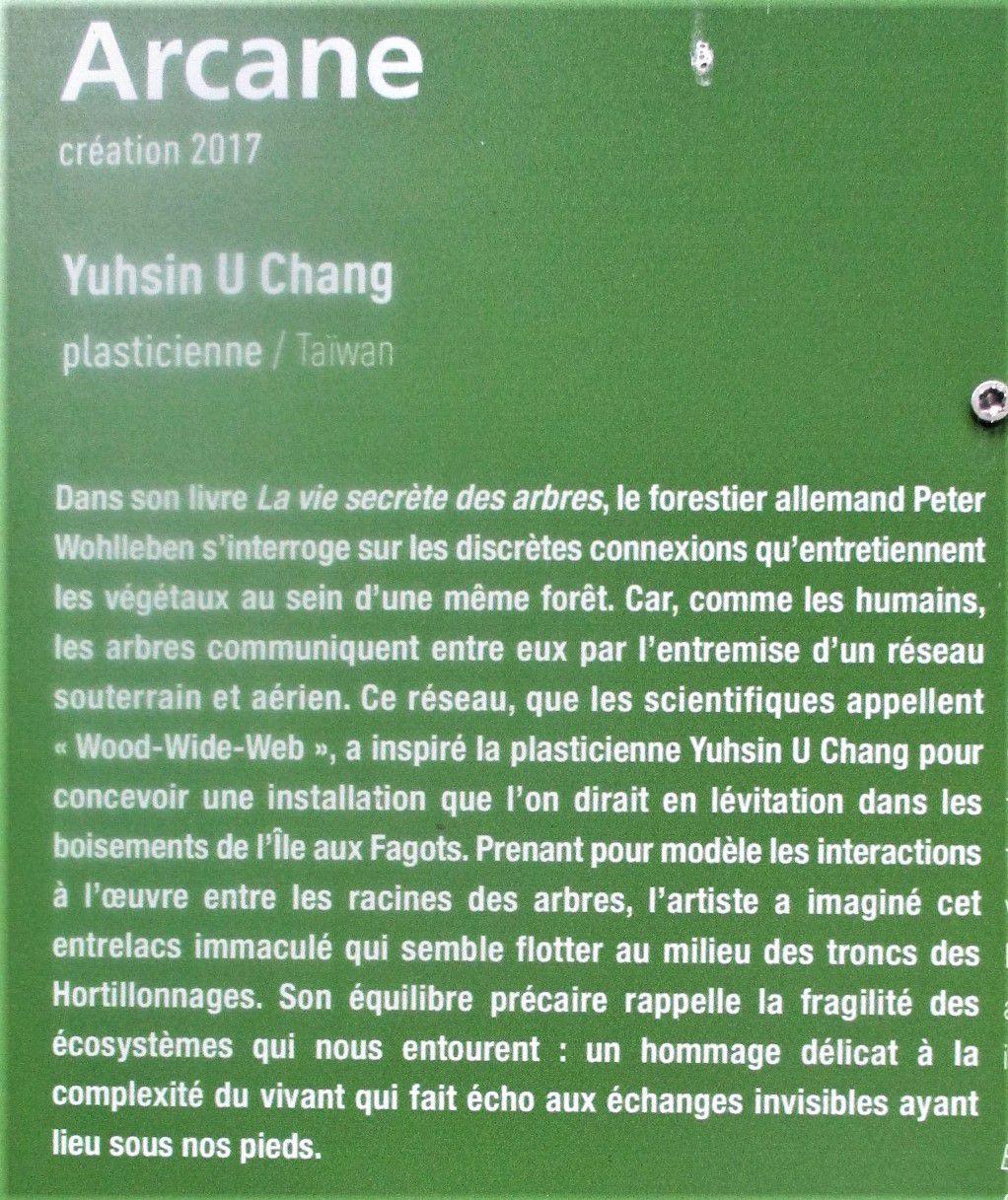 Amiens - Les hortillonnages