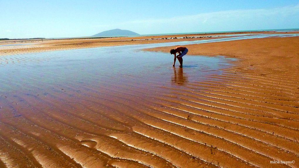 La majorite des photographies ont ete prises en Australie en 2008 et 2009. Les photographies de Vendee datent de 2011, elles ont ete prises sur la Cote de Lumiere, dans un rayon de 5km autour de Chateau d'Olonne.