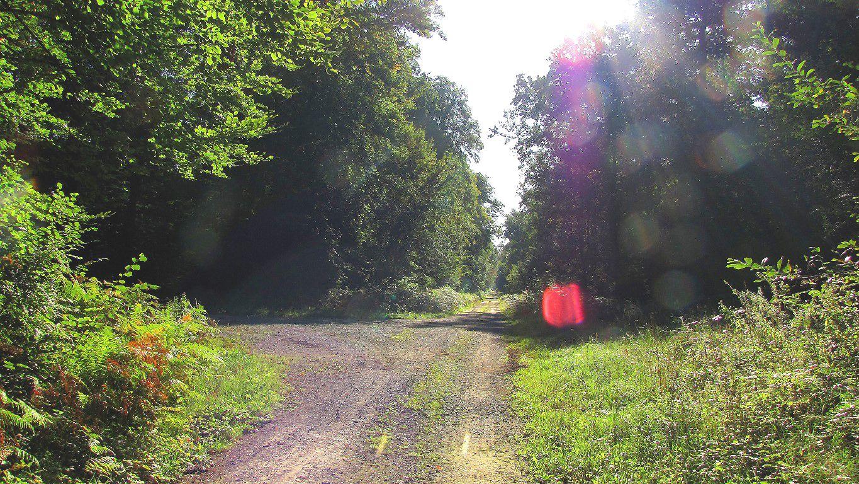 carrefour_Route de la Queue du Bois_Route du Camp de Senlis