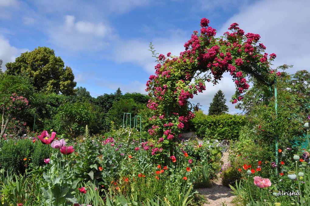 Ma visite à Giverny dans les jardins de Claude Monet ainsi qu'autour de son étang en ce jeudi 18 juin 2009.