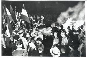L'Allemagne nazie : de la prise de pouvoir à la dictature