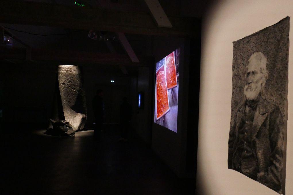 Vues de l'exposition L'Éternité par les astres © photographies Le Curieux des arts Gilles Kraemer, avril 2017, Les Tanneries, Amilly.