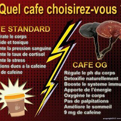 Quel café choisir ?
