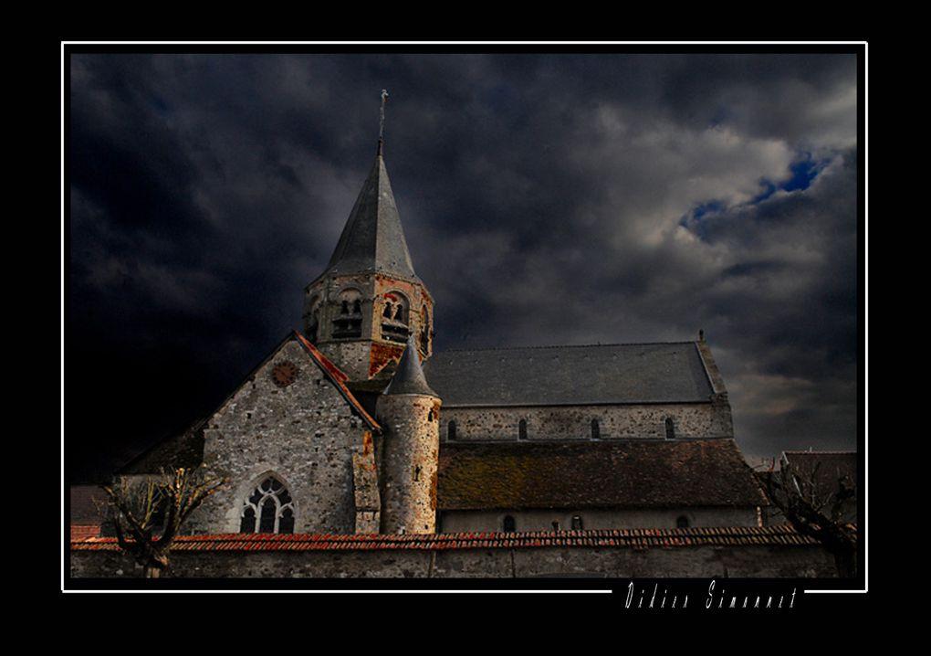 Album - Marais de Saint-Gond