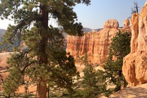 Bryce Canyon. Ses sentiers