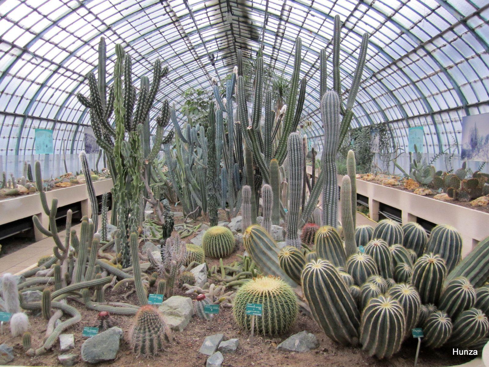 Paris, jardins des serres d'Auteuil