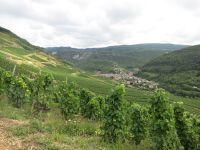 Etape 15: Brenot-Chatillon sur Chalaronne 86 km