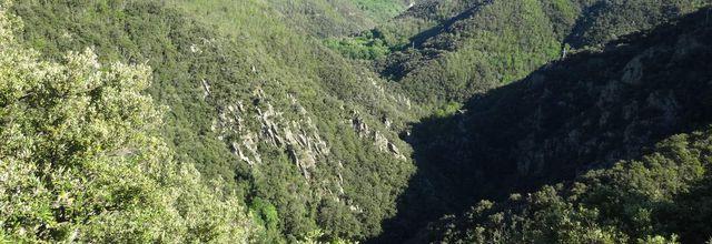 La vallée du Mondony près d'Amélie-les-Bains
