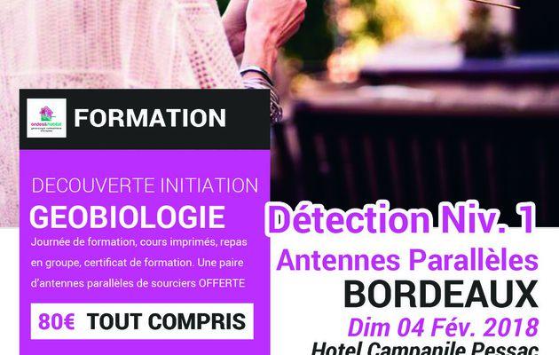 BORDEAUX-Formation Geobiologie : DETECTION Niv.1 : «Utilisation Antennes parallèles de sourcier». Dimanche 04 Février 2018