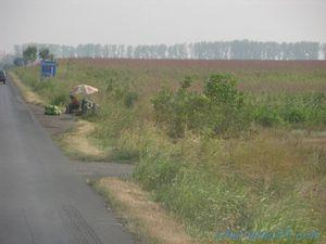 Route 2 Buzau-Bucarest, Roumanie en camping-car
