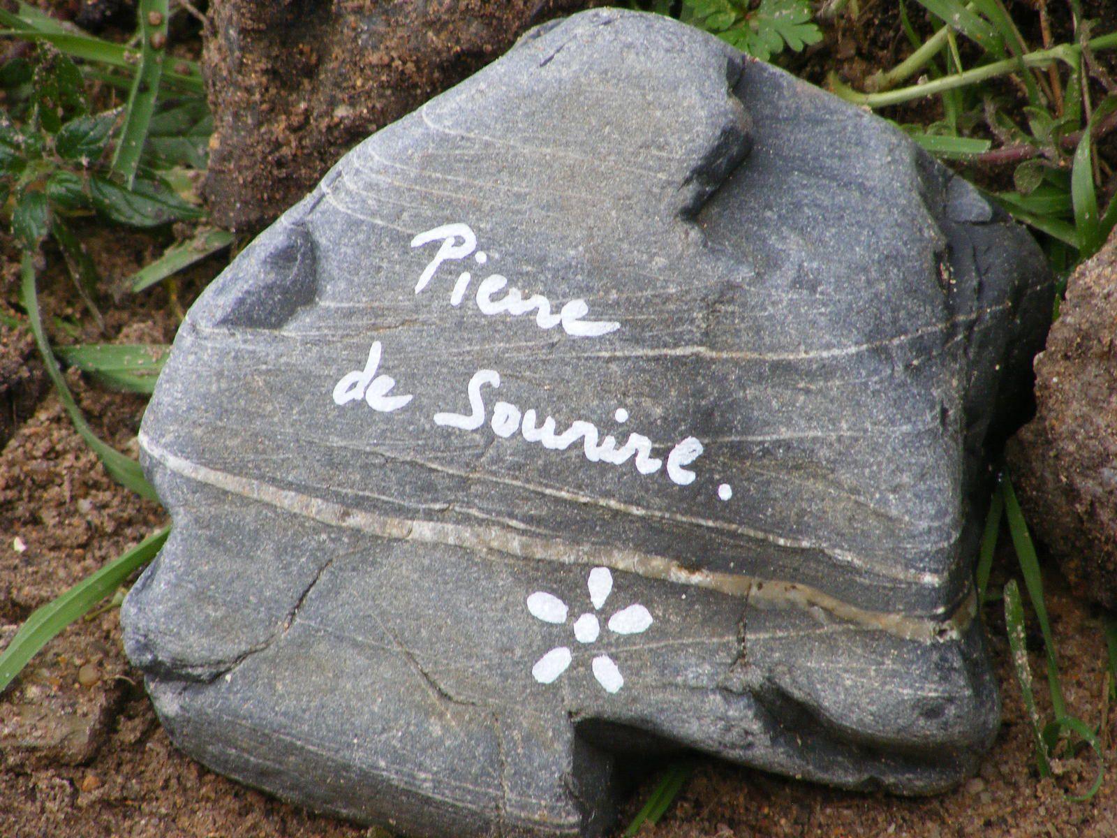La Petite Roseraie du Cap Lihou