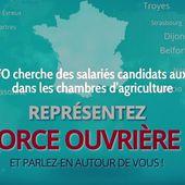 La FGTA-FO cherche des salariés candidats aux élections dans les chambres d'agriculture | Force Ouvrière