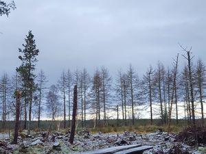 Visit Ecosse : Inverness Loch ness (Etape2)