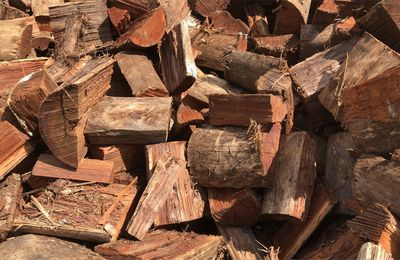 Tips You Need To Know As Regards Bark Mulch