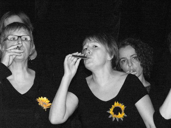 Album - les-kazooteux