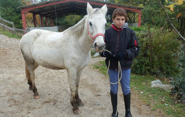 Ryan Zougar, le cheval comme solution