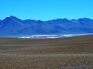 Laguna Colorada (Bolivue en camping-car)