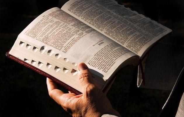 Les traducteurs de la Bible utilisent la technologie pour atteindre toutes les langues à l'horizon 2025 !