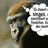 Humour Peuple: Singe évolué en mouton