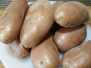 3 - Faire cuire les oeufs 9 mn afin qu'ils deviennent durs. Peler les pommes de terre encore chaudes, les couper en dés moyens et les verser au fur et à mesure dans la vinaigrette pour qu'elles s'imprègnent des saveurs de la sauce. Ajouter les rondelles d'olives. Bien mélanger le tout.