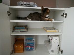 Inspection du meuble et accessoires... il a trouvé sa place quand je couds!