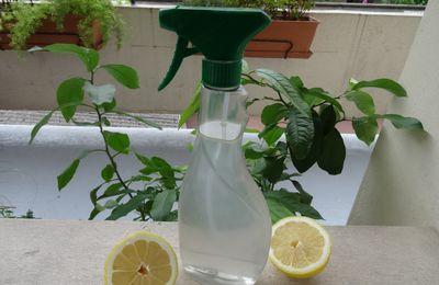 {DIY} Je fais mon spray nettoyant multi-usage désinfectant moi même