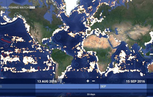 Global Fishing Watch, first free online tool to reveal commercial fishing activity worldwide