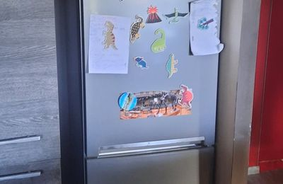 Nouveau frigo by Darty :
