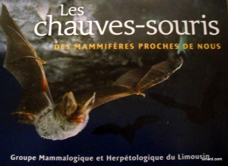 Album - jardin-de-la-grande-ourse