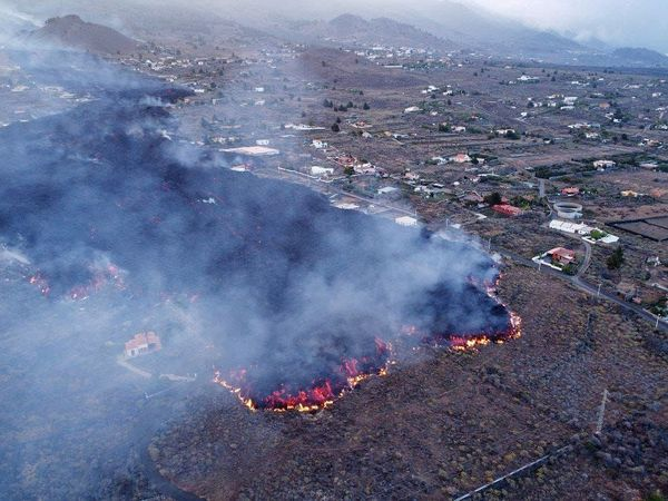 La Palma - 09.20.2021 advanced lava flow - destruction of homes - Forecast risk map - logarithmic probability of lava invasion with heights of 6 m to less than 5 meters - the eruptive fracture is symbolized by a line blue. Doc. IGNes and press - one click to enlarge