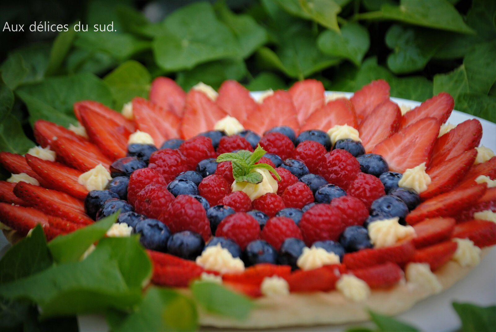 Tarte aux fruits rouges .