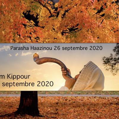 Parasha Haazinou et Kippour 2020.