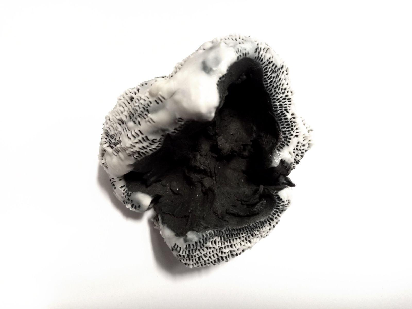 Anaïs Lelièvre, Coquilles, 2018-2019, série, porcelaine noire et blanche,  4,5 x 8,5 x 3,5 cm, crédit photo : Espace Art absolument