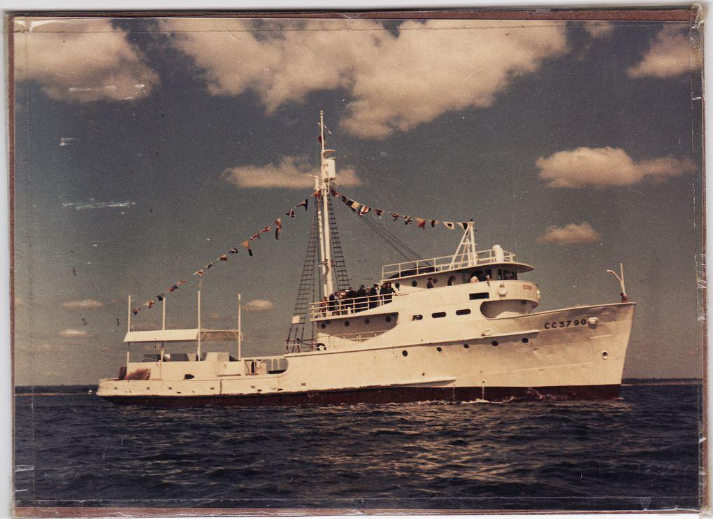 PELICAN   A699  ,Repecheur de torpilles