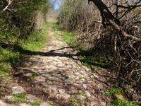 Nous traversons Sébrazac où nous avons déniché un endroit pour faire la bringue. Et nous voilà partis pour remonter ver Montegut, mais nous ne verrons pas les autruches.