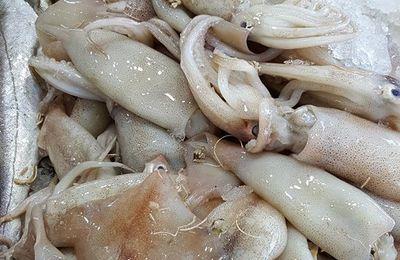 Ragoût de seiche ou d' encornets  (2p)