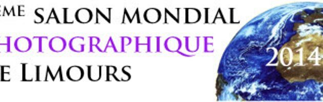 "LE CONCOURS PHOTO "" 8 th SALON MONDIAL PHOTOGRAPHIQUE DE LIMOURS"" ...."