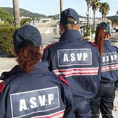 ASVP : VERS LA FIN DES DETACHEMENTS ? - Syndicat de la Police Municipale N°1 : SDPM / National