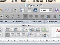 Insertion d'une zone de texte soit par le menu insertion soit par la barre d'outils. Création de la zone de texte dans la page