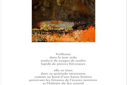 Notre ursidé Michel Diaz à Vouvray jusqu'au 21 octobre