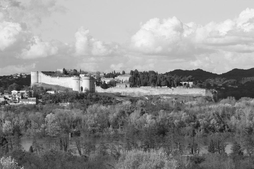 Photos d'Avignon