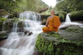 La patience, qualité mentale favorisant la méditation