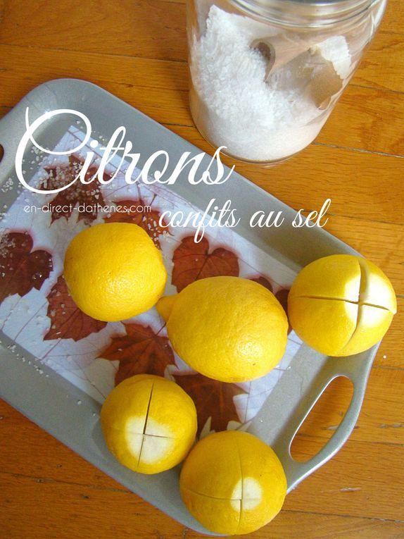 Mon citronnier est couvert de fruits, que faire de tous ces citrons ? (Index des recettes avec citron)