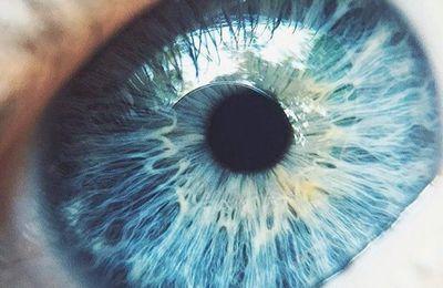 Les yeux bleux