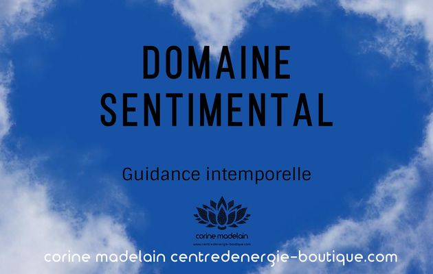 Guidance sentimentale