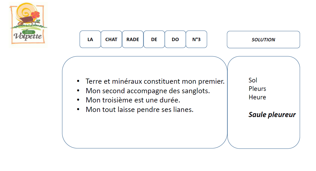 Solution charade N° 3