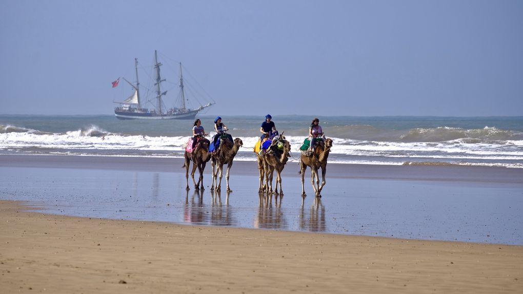 En dehors de la ville, en longeant la plage, on peut apercevoir quelques touristes à dos de chameaux, arpenter la plage, ici accompagnés par le fameux 3 mâts, dont je ne saurai jamais qui il était ni ses merveilleux voyages.