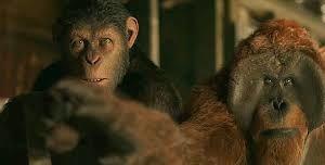 La planète des singes: suprématie  ( War for the planet of the apes )
